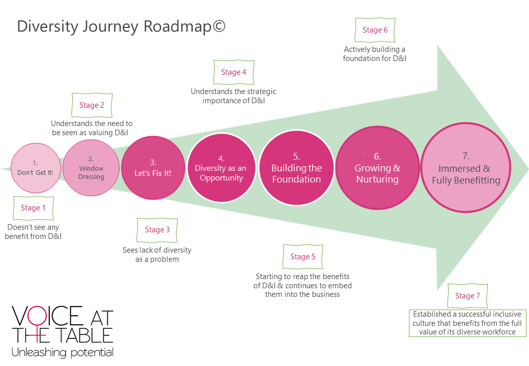diversity journey roadmap